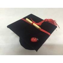 Tocco laurea nero completo di confetti e pergamena